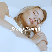 Sleep Sound de Various Artists
