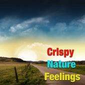 Crispy Nature Feelings by Various Artists