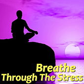 Breathe Through The Stress by Various Artists