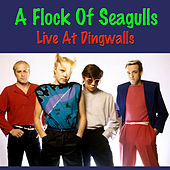 A Flock Of Seagulls Live At Dingwalls von A Flock of Seagulls