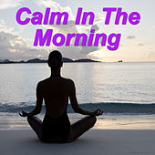 Calm In The Morning by Various Artists