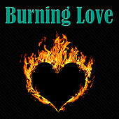 Burning Love by Various Artists