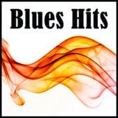 Blues Hits de Various Artists