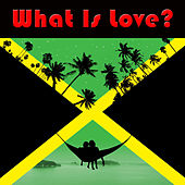 What Is Love? by Various Artists