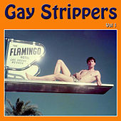Gay Strippers, Vol. 1 by Various Artists