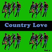 Country Love, Vol. 1 by Various Artists