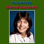 Tenderly (Live) by David Cassidy