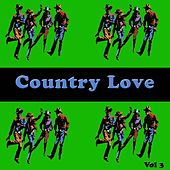 Country Love, Vol. 3 by Various Artists