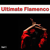 Ultimate Flamenco, Vol. 1 by Various Artists