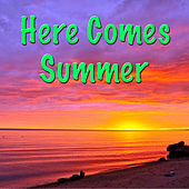 Here Comes Summer by Various Artists