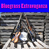 Bluegrass Extravaganza de Various Artists