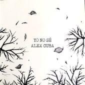 Yo No Sé by Alex Cuba
