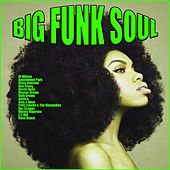 Big Funk Soul de Various Artists