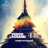 Where We Belong (Extended Mix) by Fedde Le Grand