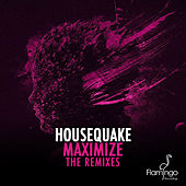 Maximize (The Remixes) by Housequake (Roog & Erick E)