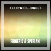 Electro & Jungle de Frigerio
