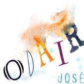 Chumbo Grosso de Odair José