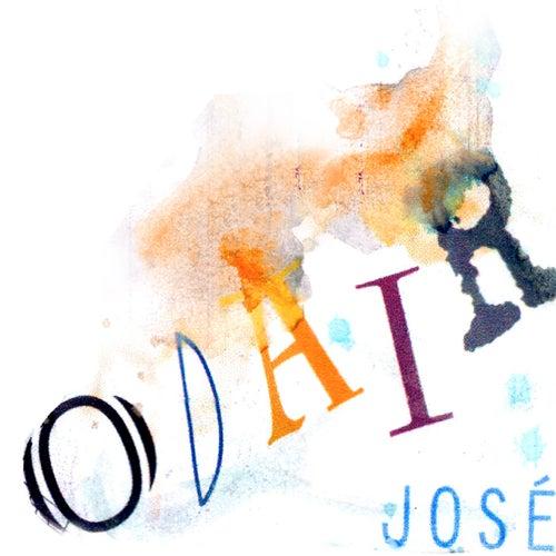 Chumbo Grosso by Odair José