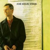 José Miguel Wisnik de Zé Miguel Wisnik