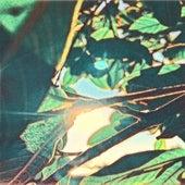 We'll Shine (The Ambient Light Remix) de Banana Cream