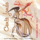 Cante Jondo by Ad Hoc Wind Orchestra