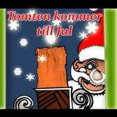 Tomten kommer till Jul by Tomas Blank