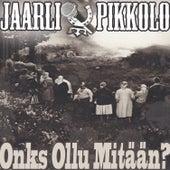Onks Ollu Mitään by Various Artists
