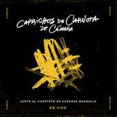 Caprichos de Carnota de Cámara (En Vivo) de Various Artists