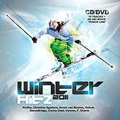 Winter Hitz (2011) by Various Artists