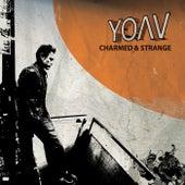 Charmed & Strange by Yoav