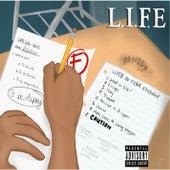 L.I.F.E by Rawson