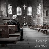 The Sound of Silence by Steve Pulvers