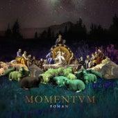 Momentum by Roman