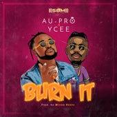Burn It by Au-Pro