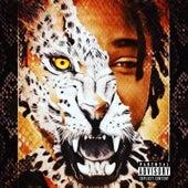Cheetah Print Dreams by Dtg