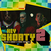 Hey Shorty 2 (feat. Brray & Chris Wandell) de iZaak