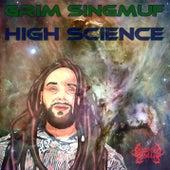 High Science by Grim Singmuf