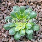 60 Natural World Zen Tracks von Massage Therapy Music