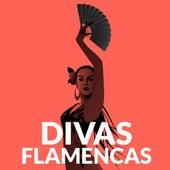 Divas Flamencas de Various Artists