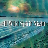 41 Wild Spirit Night von Lullabies for Deep Meditation