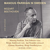 Manoug Parikian in Sweden von Manoug Parikian