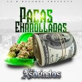 Pacas Enrolladas by Los Asociados