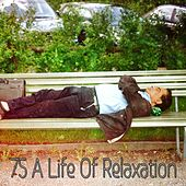 75 A Life Of Relaxation by Baby Sleep Sleep