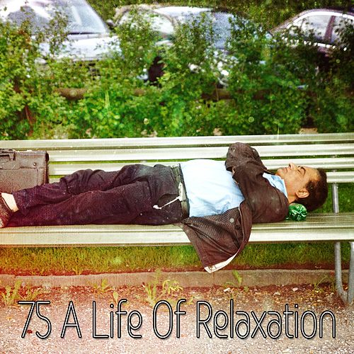 75 A Life Of Relaxation by Baby Sleep Sleep