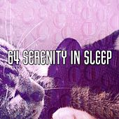 64 Serenity In Sleep by S.P.A