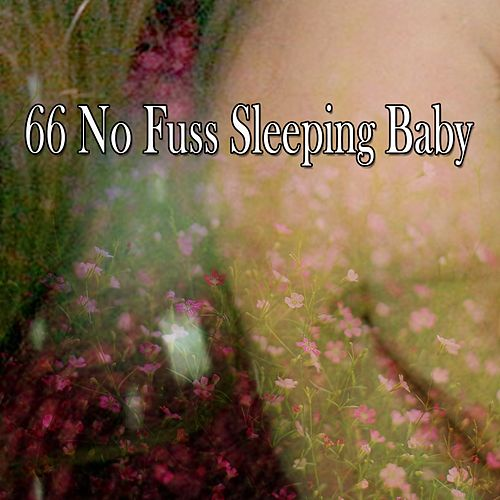 66 No Fuss Sleeping Baby by S.P.A