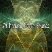 74 Natural Peace Sounds de Musica Relajante
