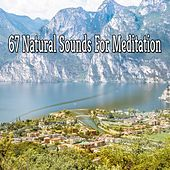 67 Natural Sounds For Meditation von Massage Therapy Music