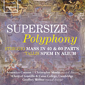Supersize Polyphony by Various Artists