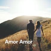 Amor Amor - Música para Amar von Love